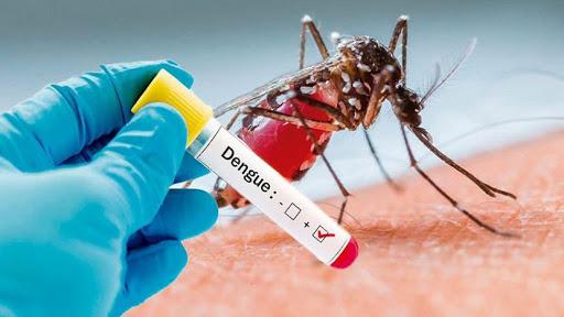 नहीं थम रहा डेंगू का कहर, नए मरीज मिले 17